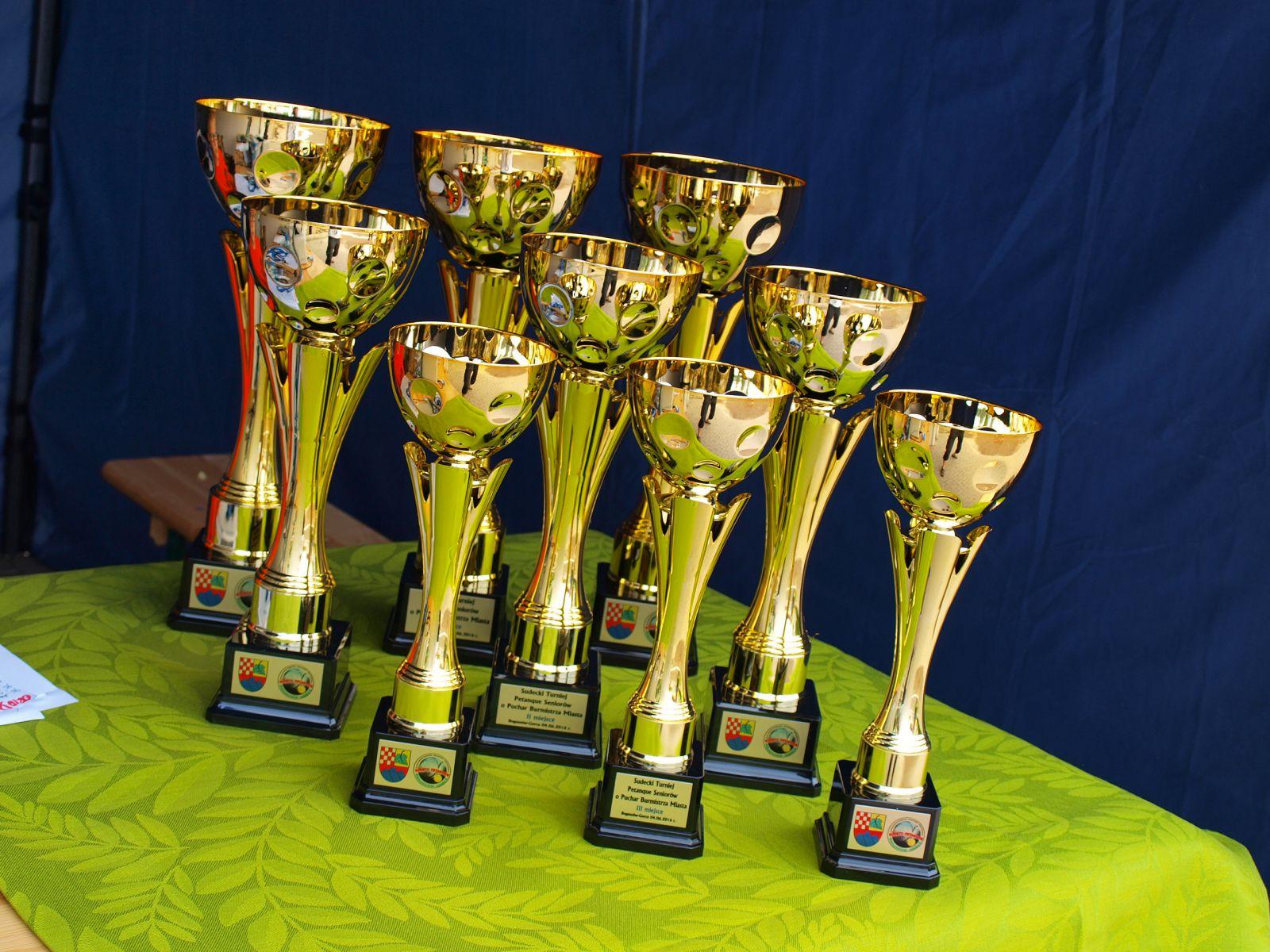 Sudecki Turniej Petanque Seniorów o Puchar Burmistrza Miasta Boguszowa-Gorc