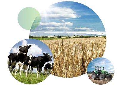 Powszechny spis rolny - potrzebujesz pomocy?