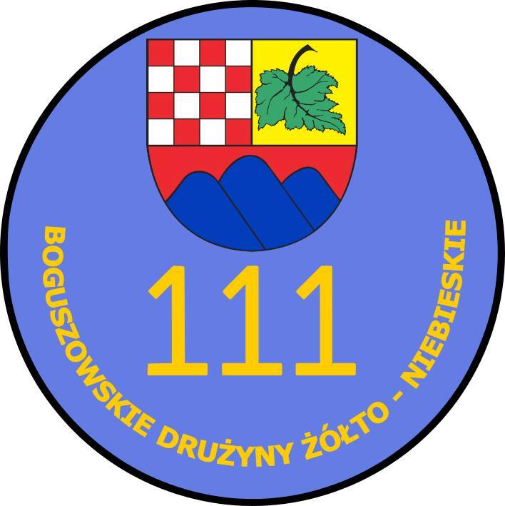 Harcerski start w Boguszowie