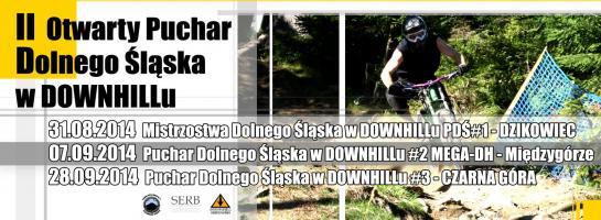 Downhill Dzikowiec 2014