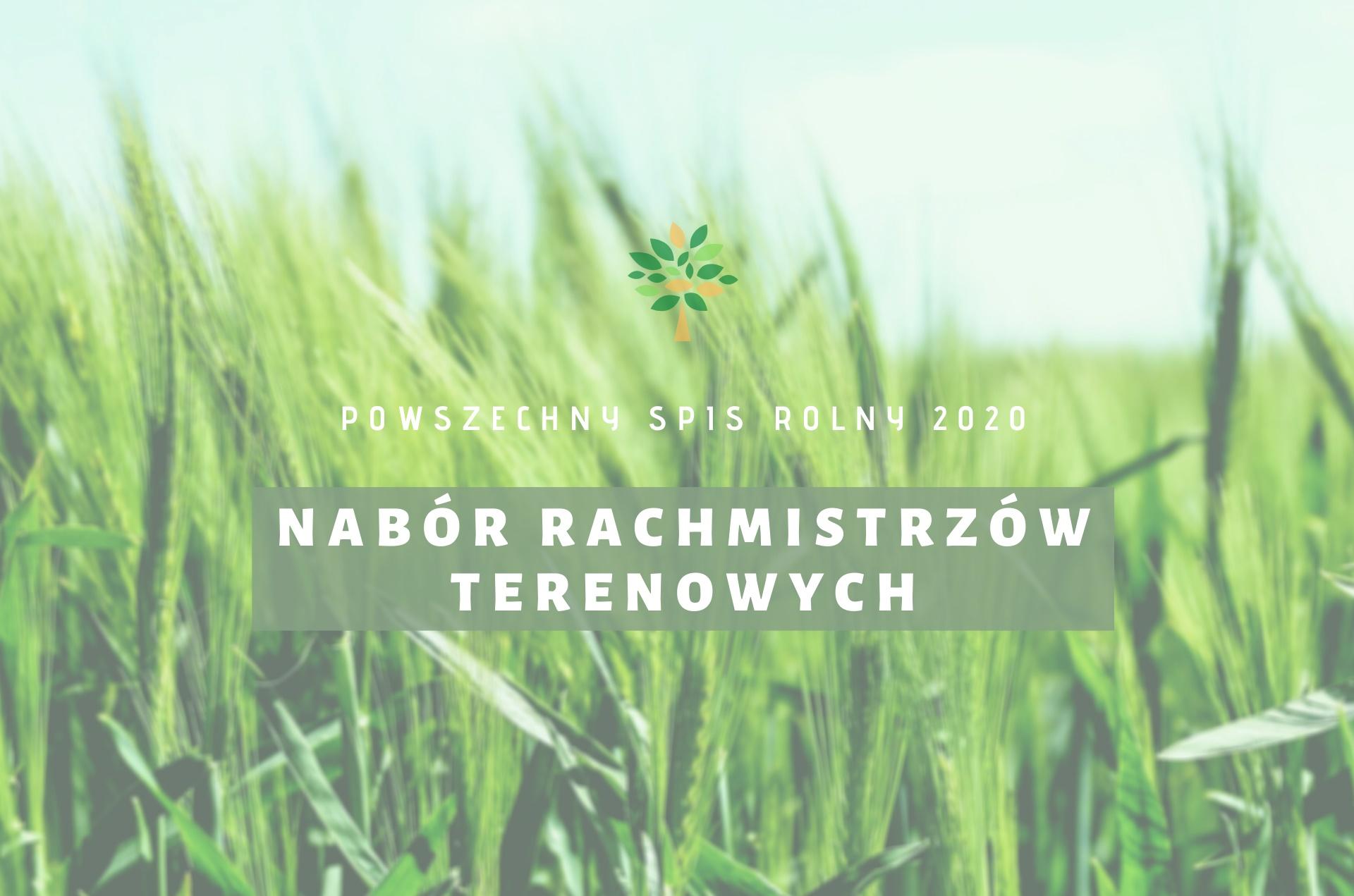 Nabór kandydatów na rachmistrzów terenowych  do przeprowadzenia Powszechnego Spisu Rolnego 2020