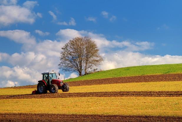 Uprawnienia rolnika ryczałtowego