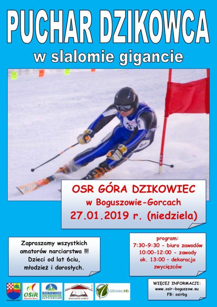 Puchar Dzikowca w slalomie