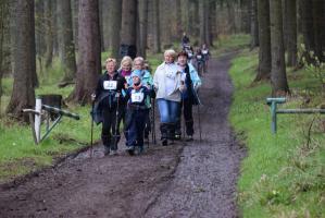 NorDZIK Walking 2017